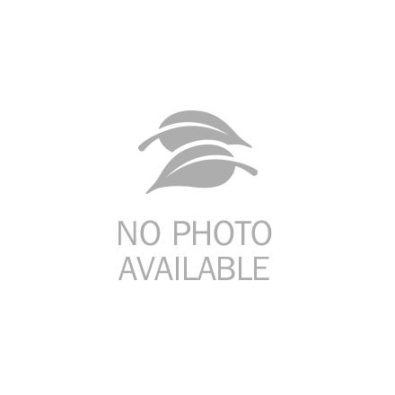 TheraBand Professional Latex Resistance Band Loop, 8 Inch, Red, Medium, Beginner Level 2
